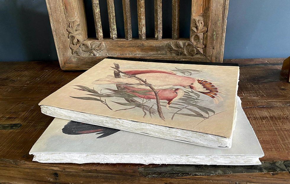 Artisan Australian cockatoo journals with hand made paper and leather binding