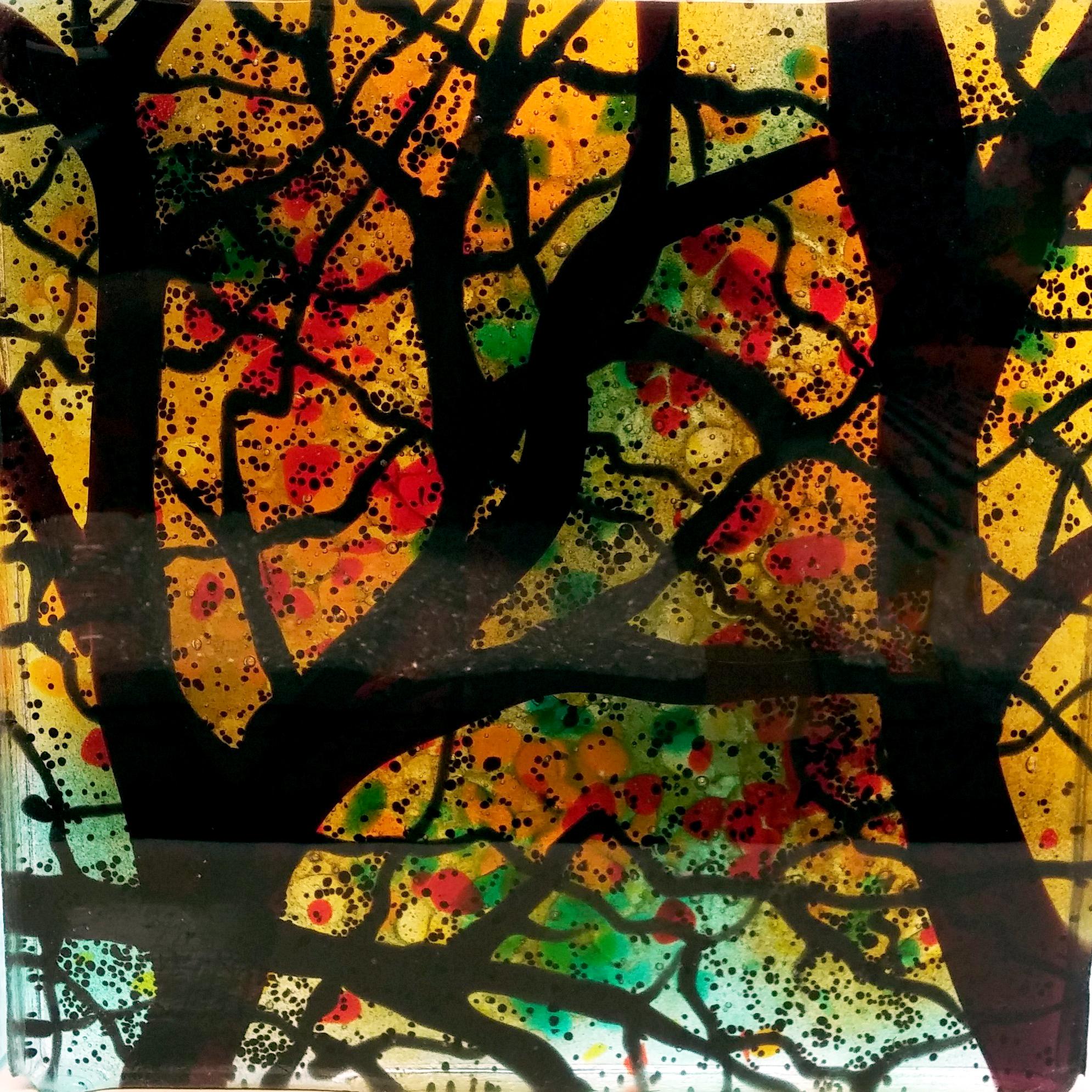 trees me