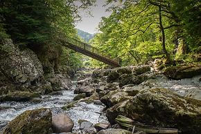 Miners Bridge.jpg