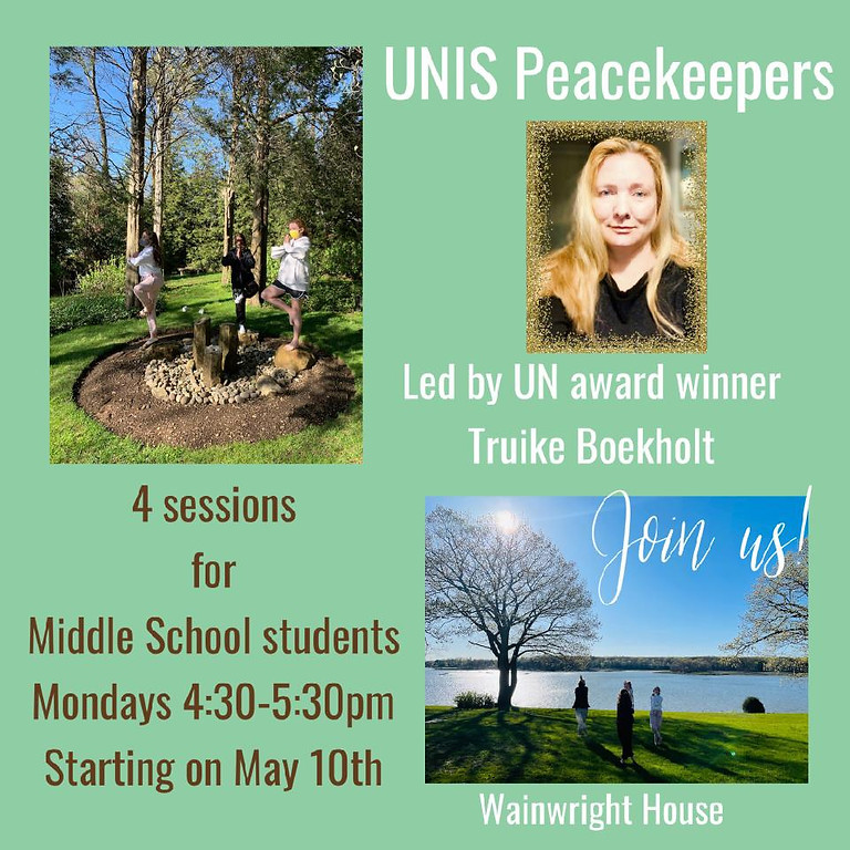 UN Peacekeepers 3 Sessions