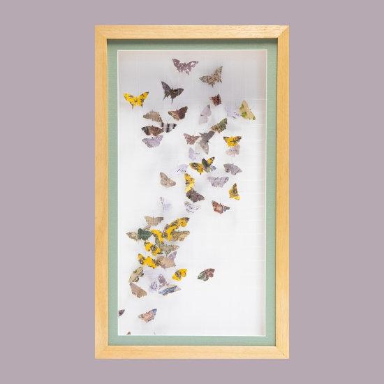 Fluttering (Butterflies)
