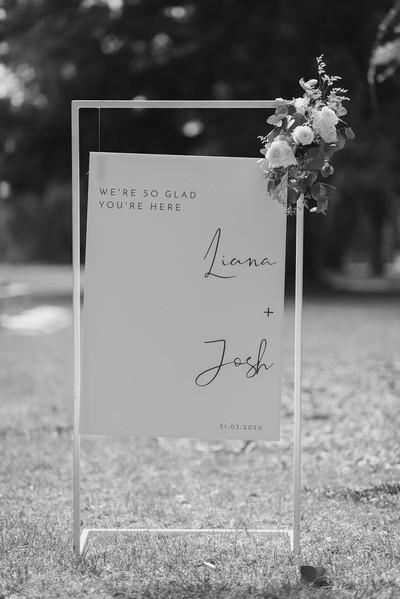 Josh + Liana-3.jpg