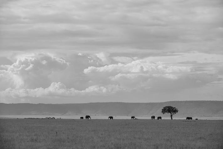 36-#kenya