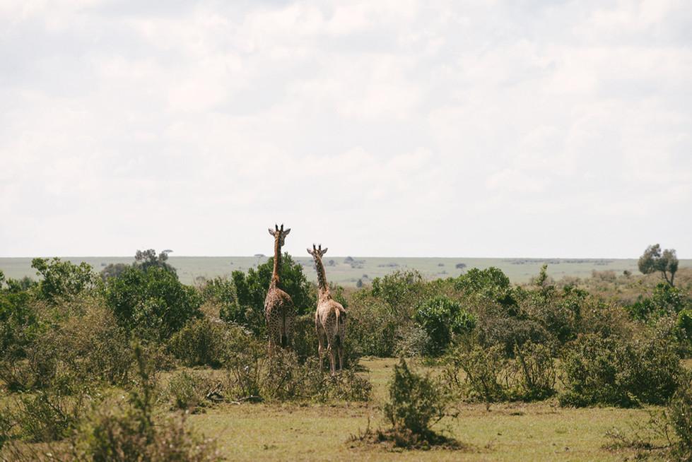 27-#kenya