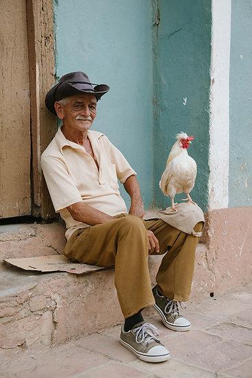 CUBAN COCK