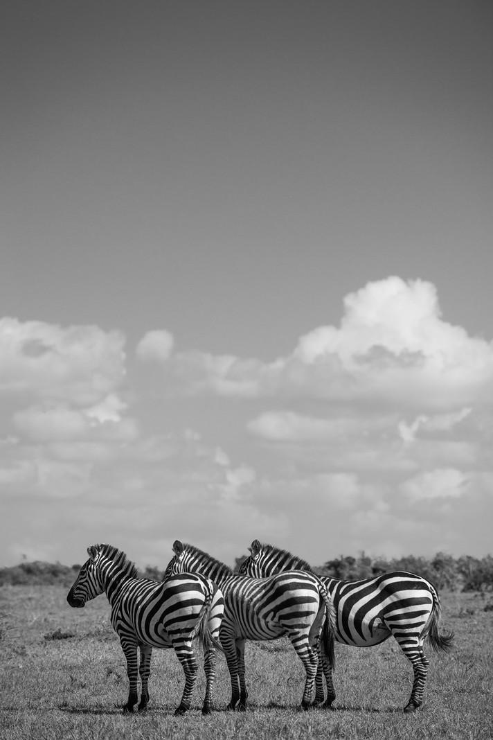28-#kenya