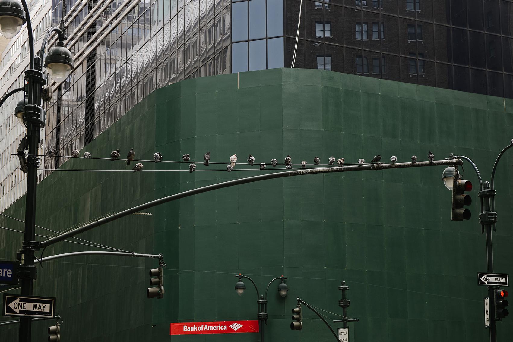 30-#newyork
