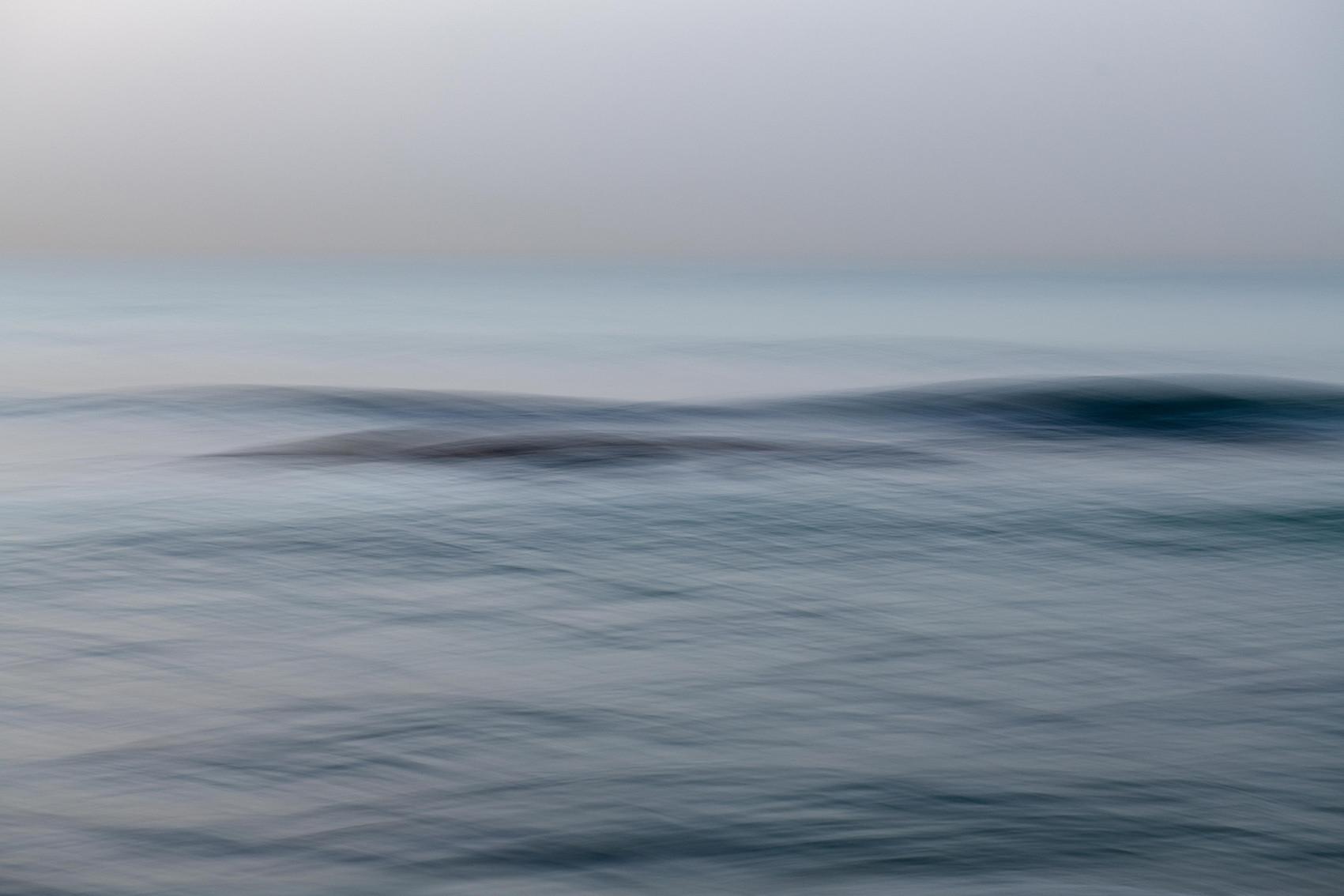wild ocean 0.4