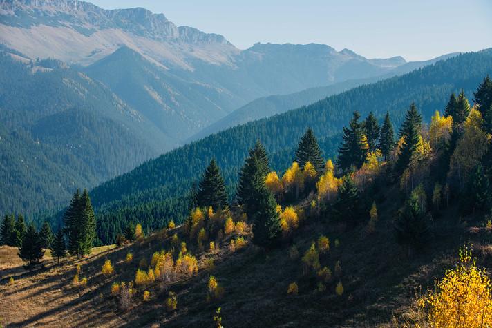 11-#nature
