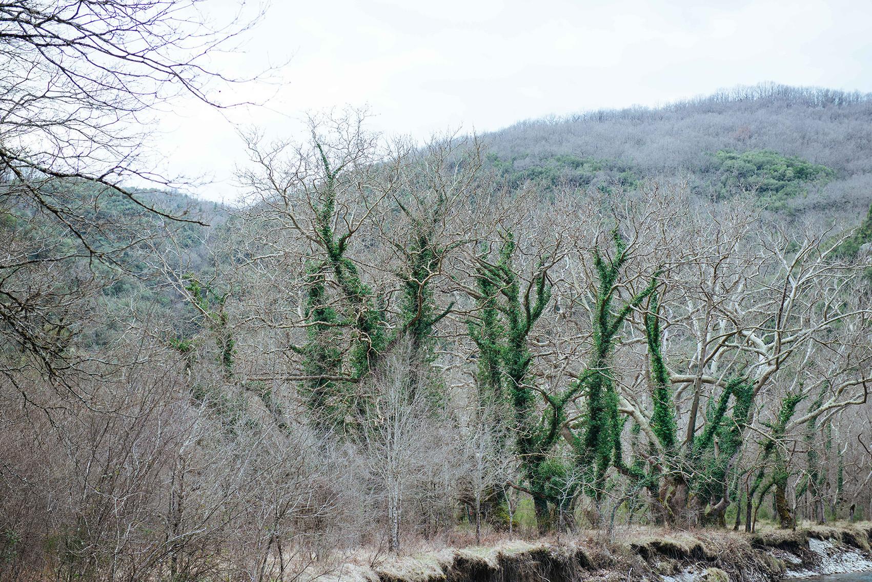7-#nature