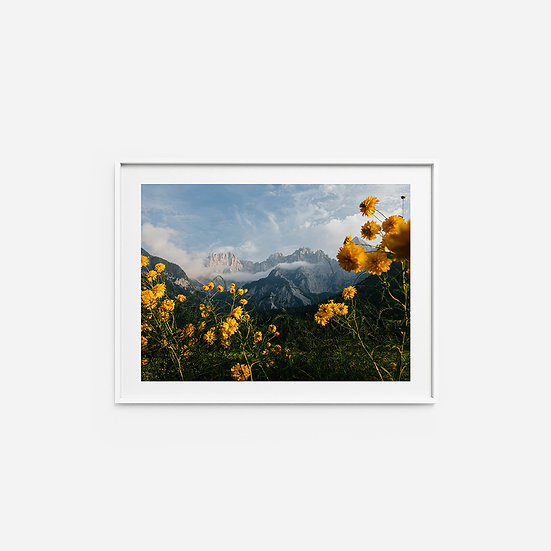 Yellow and Mountains