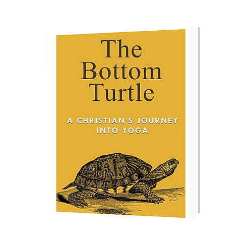 The Bottom Turtle.png