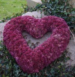 Sedum Heart Wreath copy