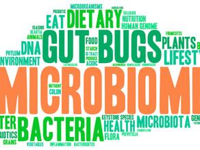Vegetarian and Vegan Diets: Good for Gut Microbiota?