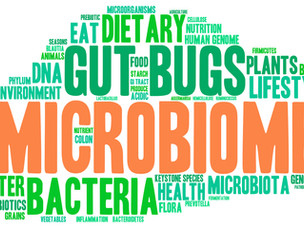 Vegetarian and Vegan Diets: Good for Gut Microbiota?