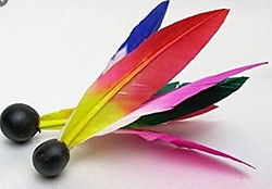 羽子板の羽根.jpg