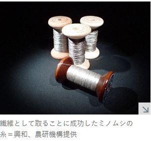 ミノムシの糸.JPG