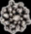 DSC02964-3-transparent.png
