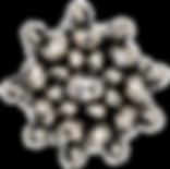 DSC02964-2-transparent.png