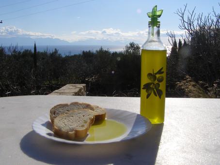 Olive Harvest at Fig Leaf Villas
