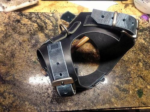 Dog Harness + Leash combo