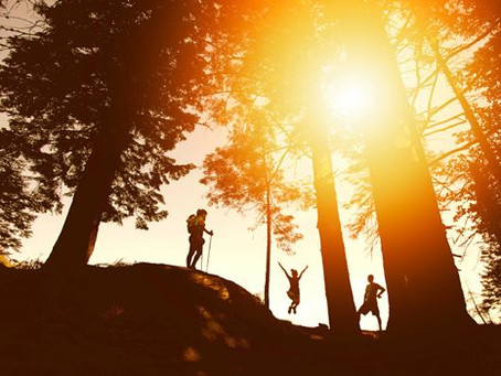 Hiking: Free, Fun, and Good for the Soul