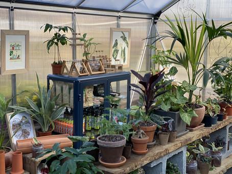 🧑🏻🌾 Nicolas, alias le gardien des plantes lance la Société Protectrice des Végétaux (S.P.V.)