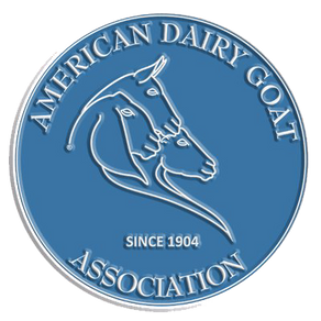 How To Get Started With a Registered Dairy Goat Herd