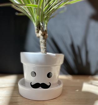 """Pot de Fleurs """"Mr Moustache"""""""