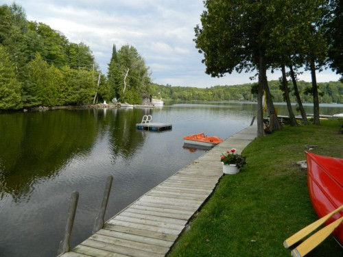 cottage cabin for rent in Haliburton Highlands Ontario