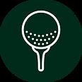 iconos golf web 2020-01.png