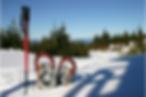Raquette Mont-Blanc.png