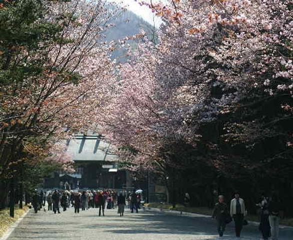 明治神宫  | 东京 | hnccj.net
