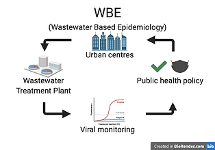 The WBE cycle relies on monitoring changes in pathogens in the wastewater to inform policy, and then detecting changes in wastewater monitoring as a result.