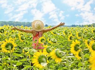 sunflowers-joy.jpg