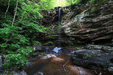 Taladega National Forest-sm.jpg