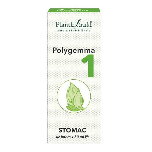 Polygemma 1, Stomac, 50 ml