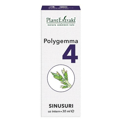 Polygemma 4 Sinusuri, 30 ml