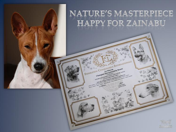 """Nature's Masterpiece HAPPY FOR ZAINABU """"Happy"""" potwierdzono oficjalnie tytuł INTERCHAMPION czyli uzyskała certyfikat C.I.B."""