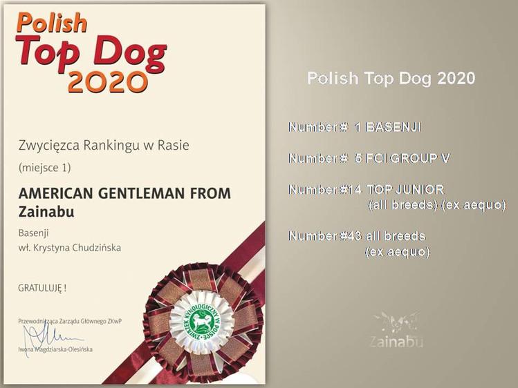 """Jack"" w rankingu Polish Top Dog 2020"