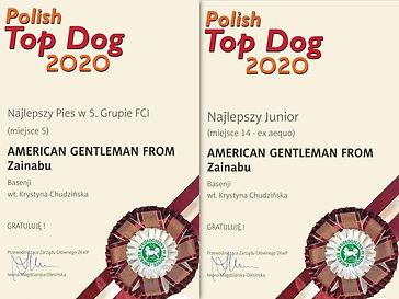 basenji zainabu polish top dog 2020.jpg