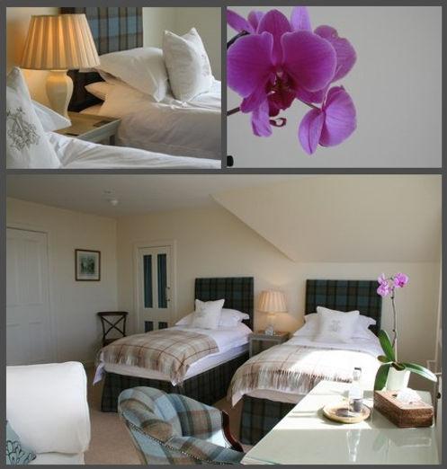 bedroom_as.jpg