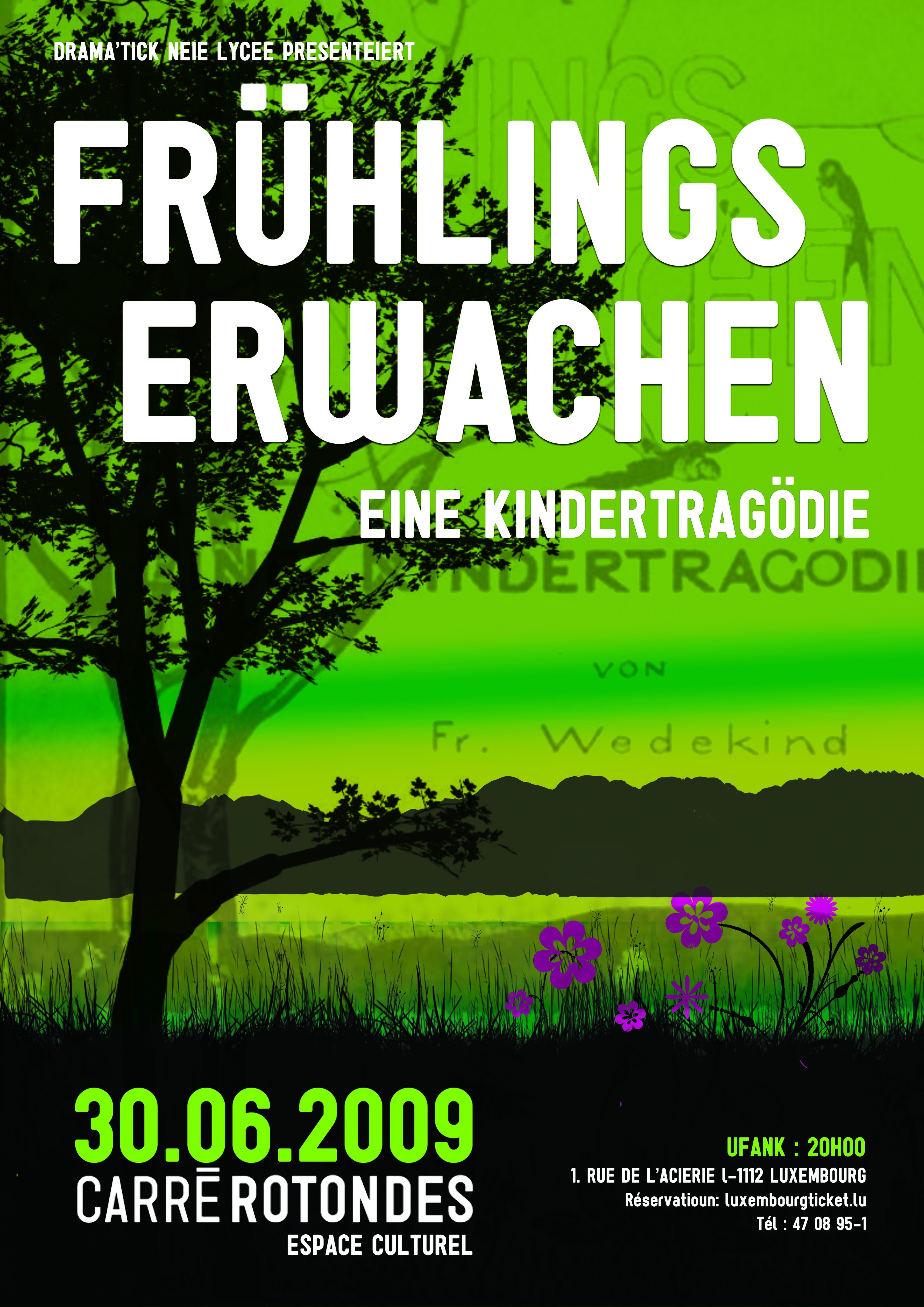 2009_Frühlingserwachenv.jpg