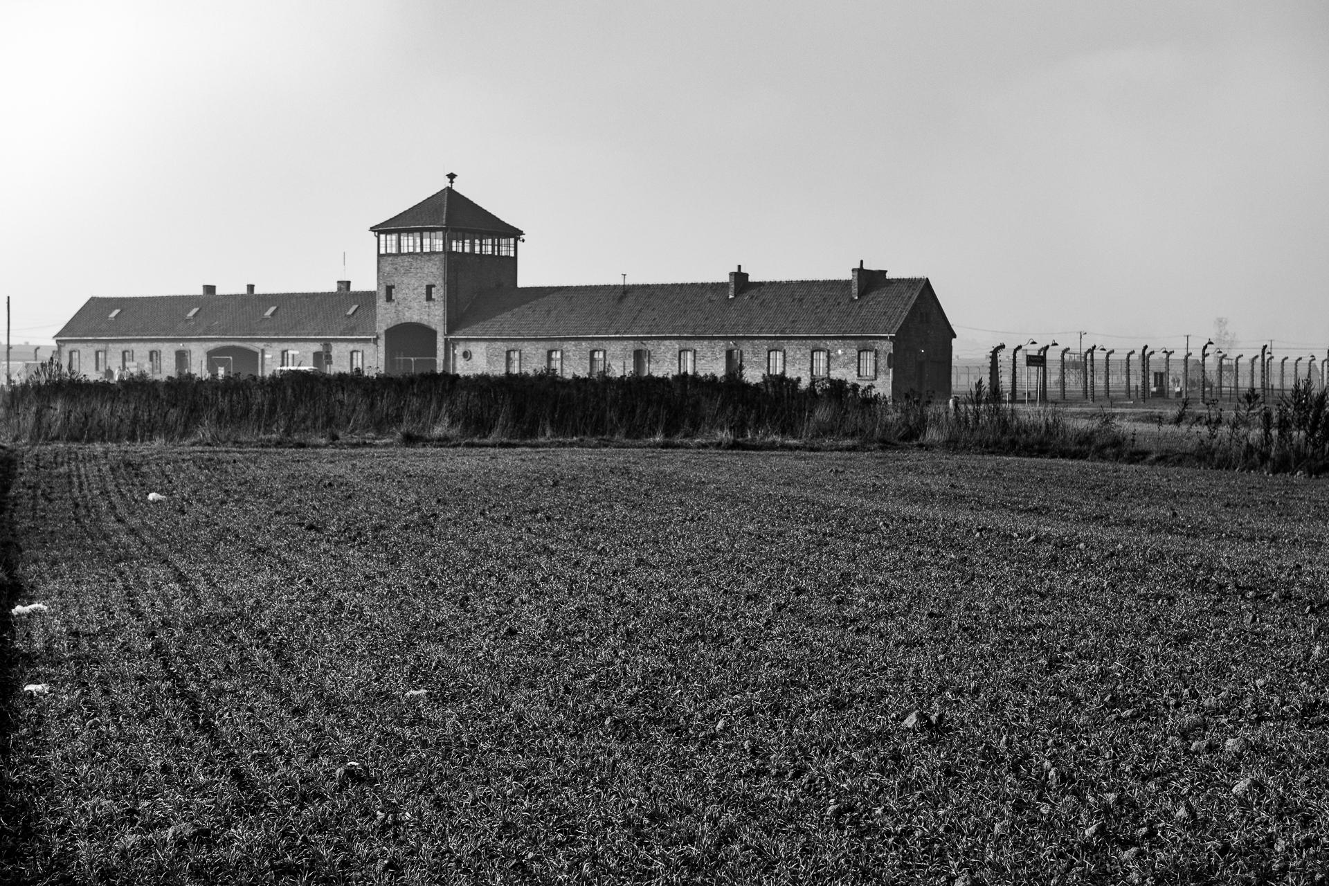 birkenau-6844