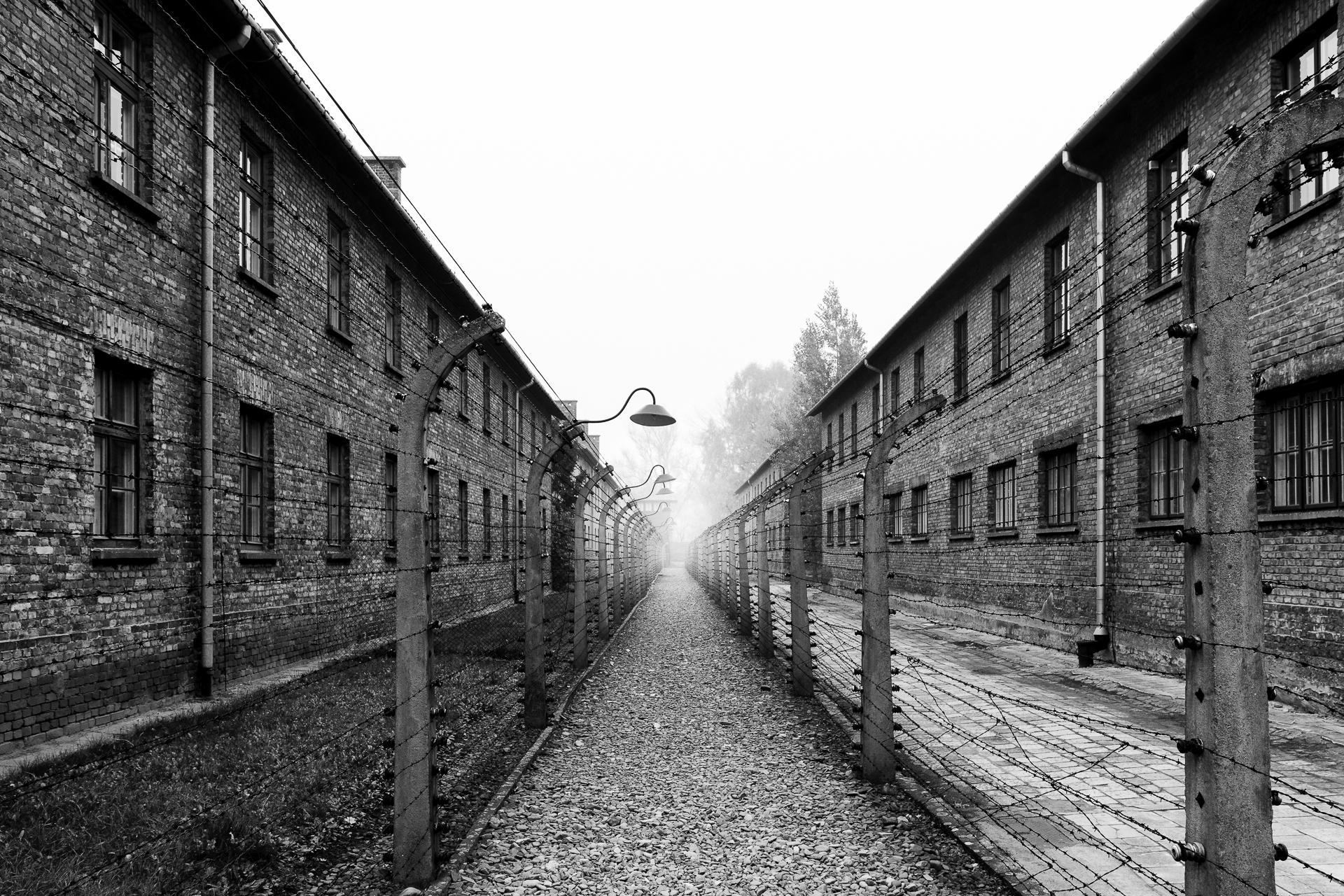 Auschwitz (2015)