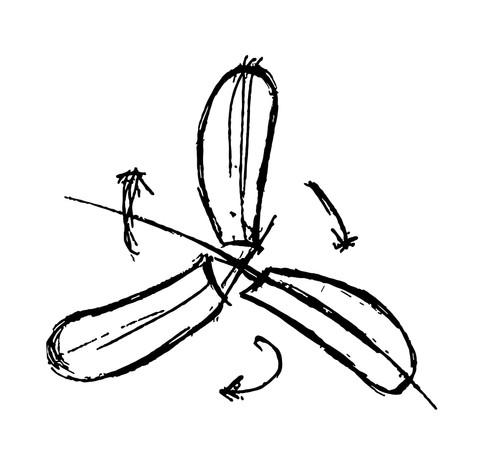 Eliche Logo Sketch Process