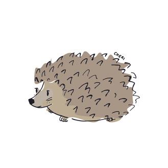 HedgeHog*