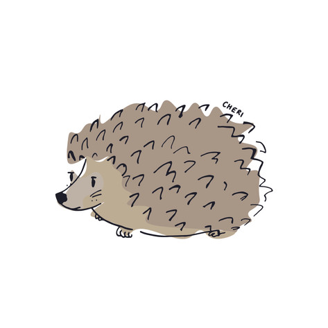 HedgeHog*
