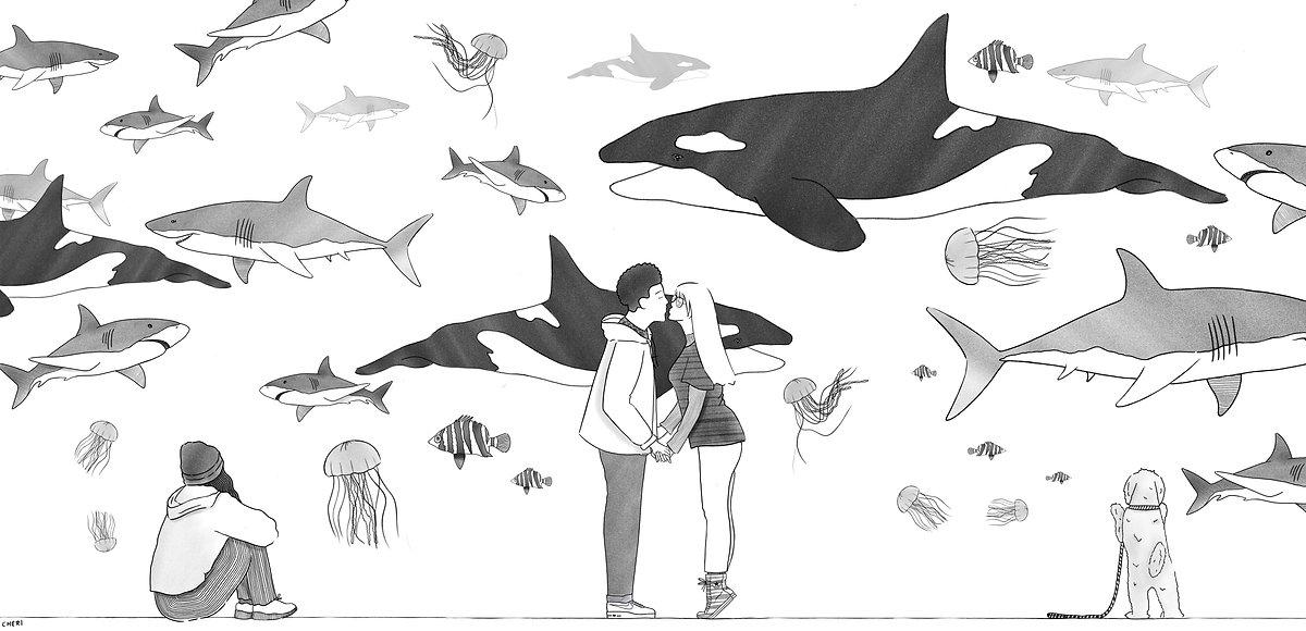 aquarium copy.jpg