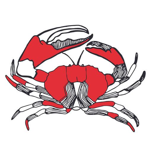 Crab Illustration